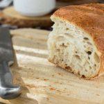 Hamilton Beach 29882 Bread Machine Review