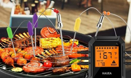 Thermoworks Smoke Thermometer Review