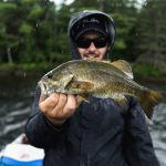 Should You Be Eating Perch?