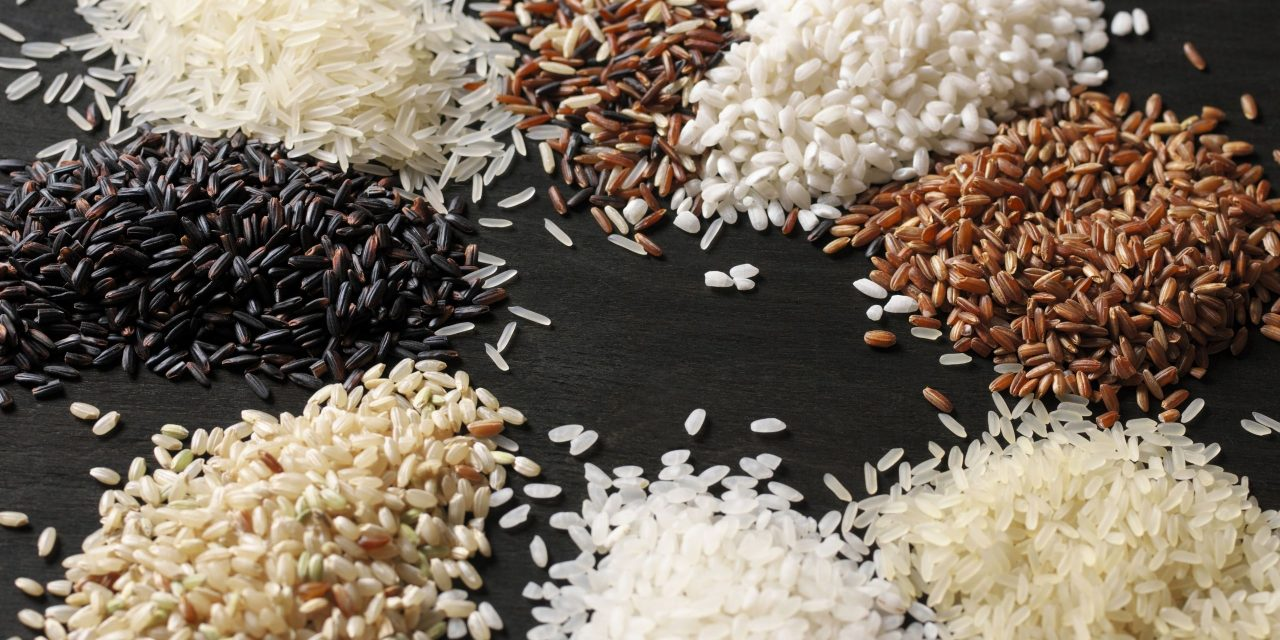 Undercooked rice – fixing it, food poisoning, can you eat it