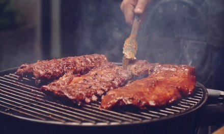Best Grill for Under $250