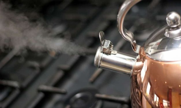Best copper tea kettle