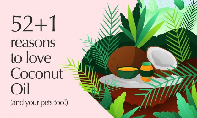 52+1 reasons to love Coconut Oil
